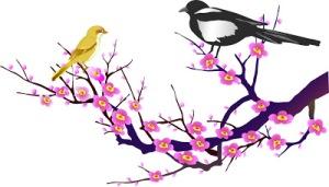 hoa đào chim én